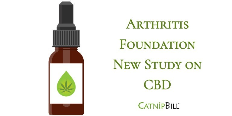 Arthritis Patients CBD Survey | Catnip Bill