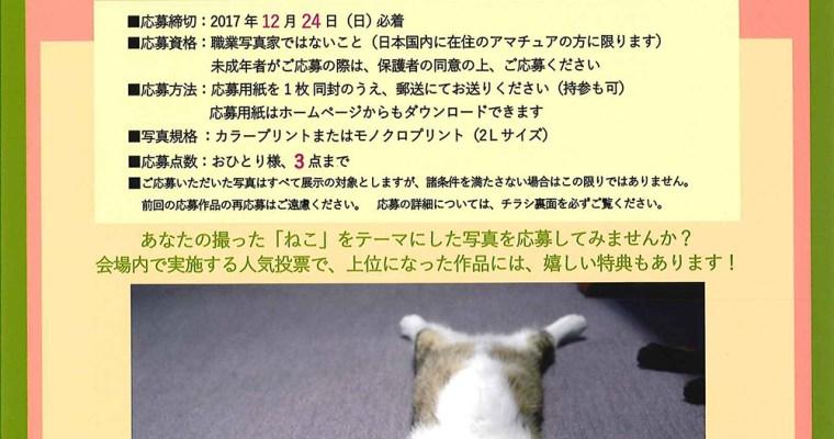 2018年2月 大佛次郎記念館で「ねこ写真展」開催、現在作品募集中です。