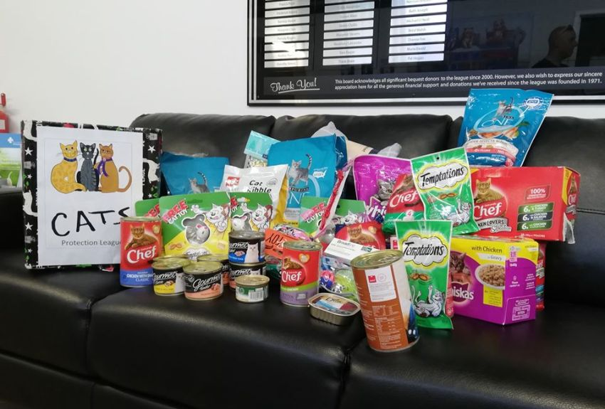 large donation of cat food and toys