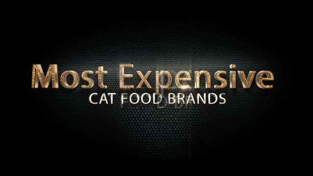 Cat Food Brands1 10 Most Expensive Best Cat Food Brands