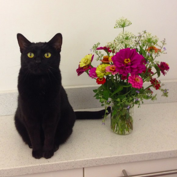 Mooha and Feral Flowers
