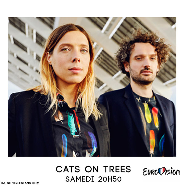 cats-on-trees-eurovision