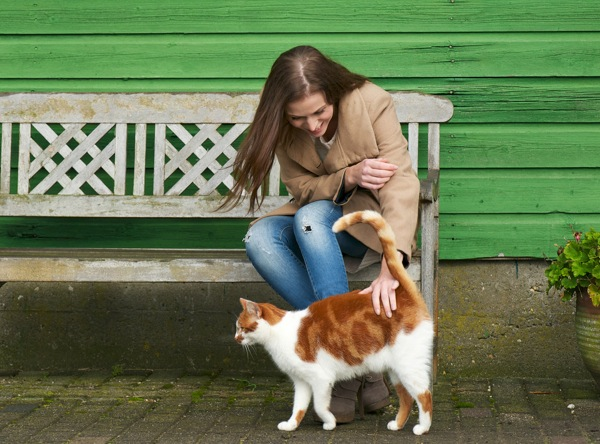 A girl sitting on a bench petting a cat.