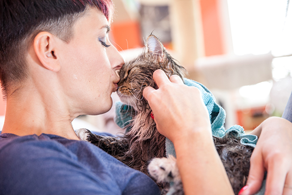 A wet cat kissing and rubbing faces with a woman.