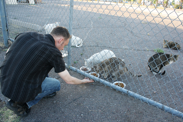 Peter is part of a small team that cares for feral cats and gets them TNRd.