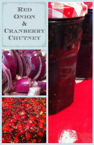 Caramelised Red Onion and Cranberry Chutney - The best onion chutney recipe using cranberries and caramelised red onions