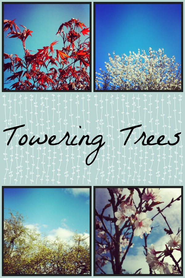 tree Collage 2