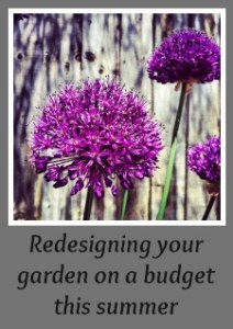 Redesigning your garden on a budget this summer