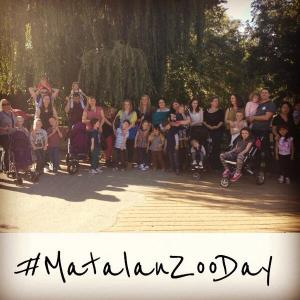 m zoo day