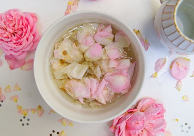 roses in Water Diy organic cosmetic with roses photos