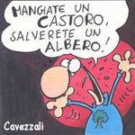 Castoro_2