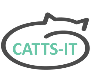 CATTS - Information Technology