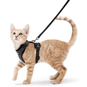 Rabbitgoo Cat Harness And Leash Best Cat Harness