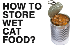 How to Store Wet Cat Food?