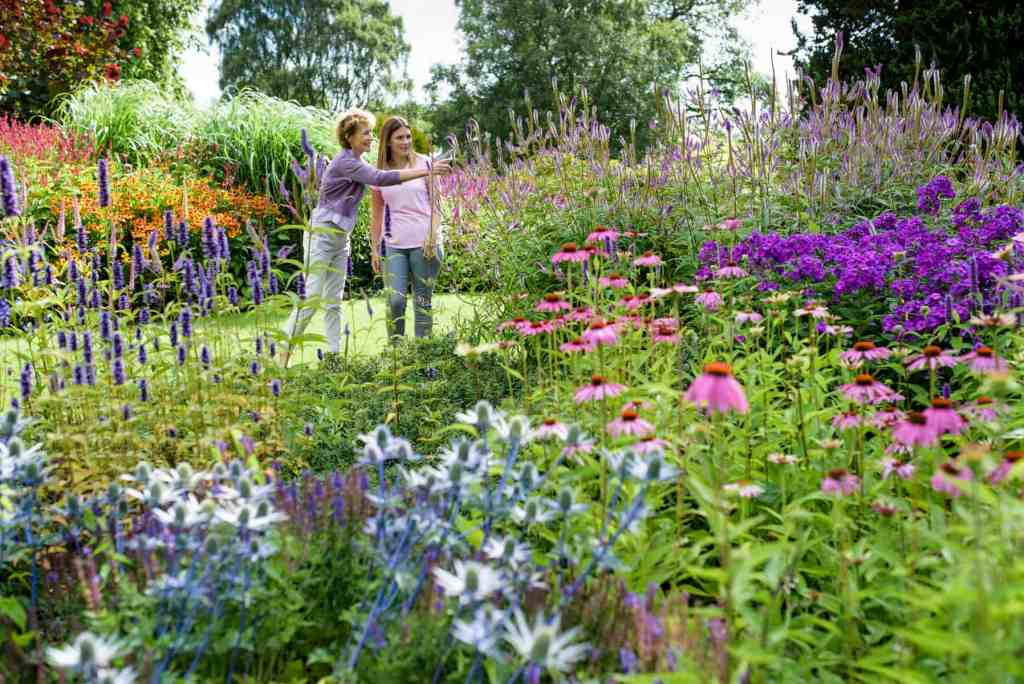 Summer family photoshoot at RHS Harlow Carr.