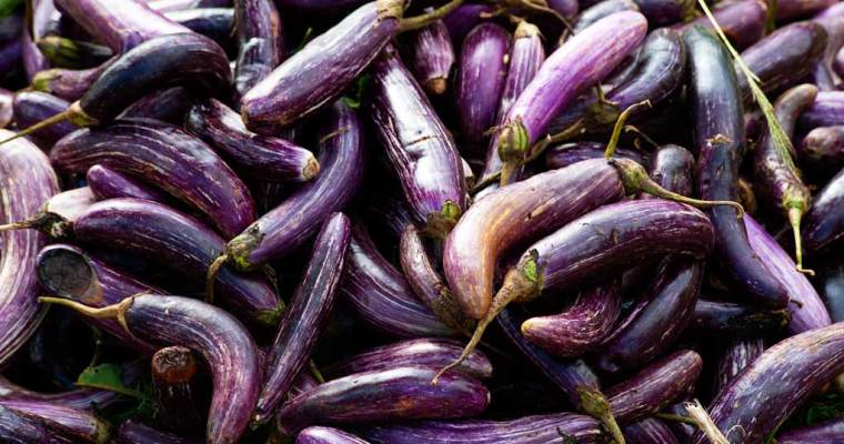 Roasted Japanese Eggplants