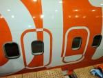 5852876123 7d6567046c z - IMAGENS: Boeing 737-800 com pintura especial de 10 anos da companhia aérea GOL