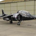 Harrier civil