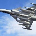 Ministros da Suécia e Croácia discutem possível aquisição do caça Gripen
