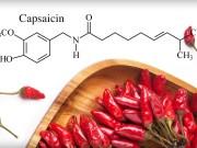 What are Capsaicinoids