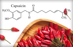 What are Capsaicinoids