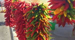 Hatch Chile Festival