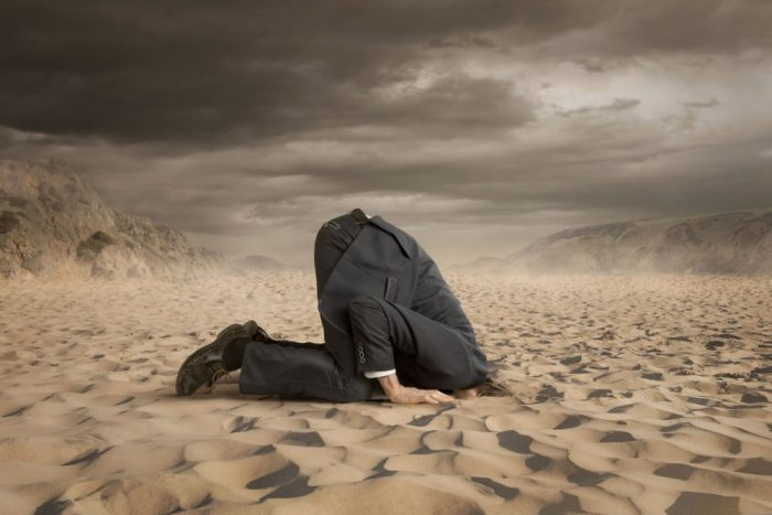 Don't hide your head in the sand! Defend your education brand.
