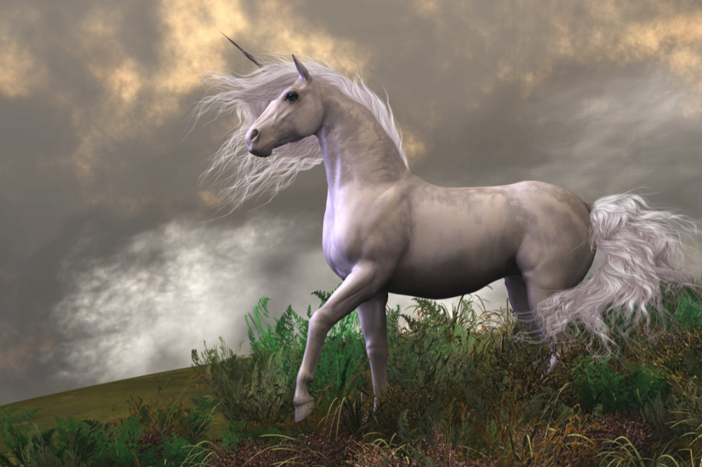 When's the best time or date to send your email to improve email open rates? It's as mythical as a unicorn.