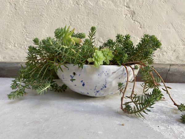 Matera Con Planta Colgante. Blanco Dalmata Azul. (M)