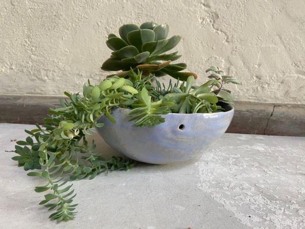 Matera Con Planta Colgante. Lila. (M)