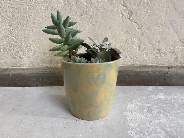 Matera Con Planta Cono. Azul|Amarillo. (M)