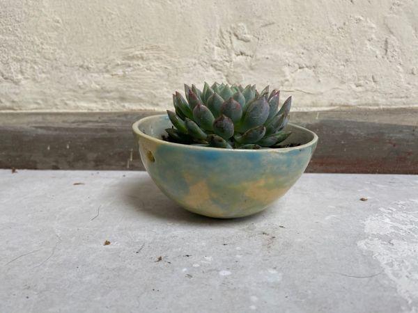 Matera Con Planta Colgante. Azul|Amarillo. (Xs)