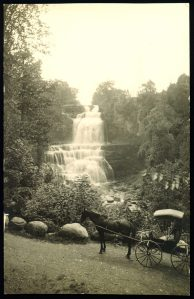 Chittenango Falls with Buggy_ no words