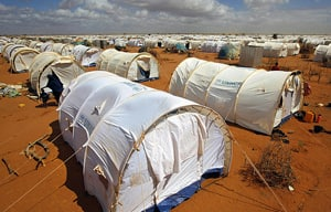 Four international aid workers were abducted on June 29 from Kenya's Dadaab refugee camp, which is about 100 kilometres from the Somali border.