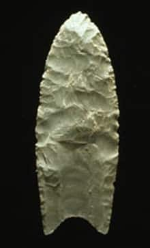 An 11,000-year-old Clovis spear point, with the characteristic notch at its base that distinguishes it from the Western Stemmed spearhead.