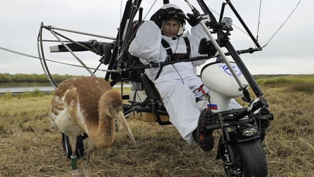 Russian President Vladimir Putin, seen here in a motorized hang-glider near a Siberian crane, has drawn both praise and criticism for a number of adventurous stunts.