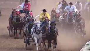 A horse had to be euthanized after it broke a leg during a chuckwagon race on Tuesday night. Another horse suffered an apparent heart attack after completing a race on Sunday.