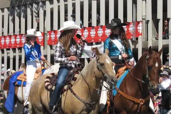 The Calgary Stampede Parade S Roaming Reporter Amber