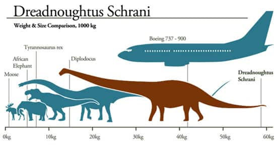 Image result for dreadnoughtus