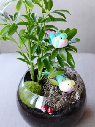 A small terrarium with two small toy birds and plastic mushrooms.