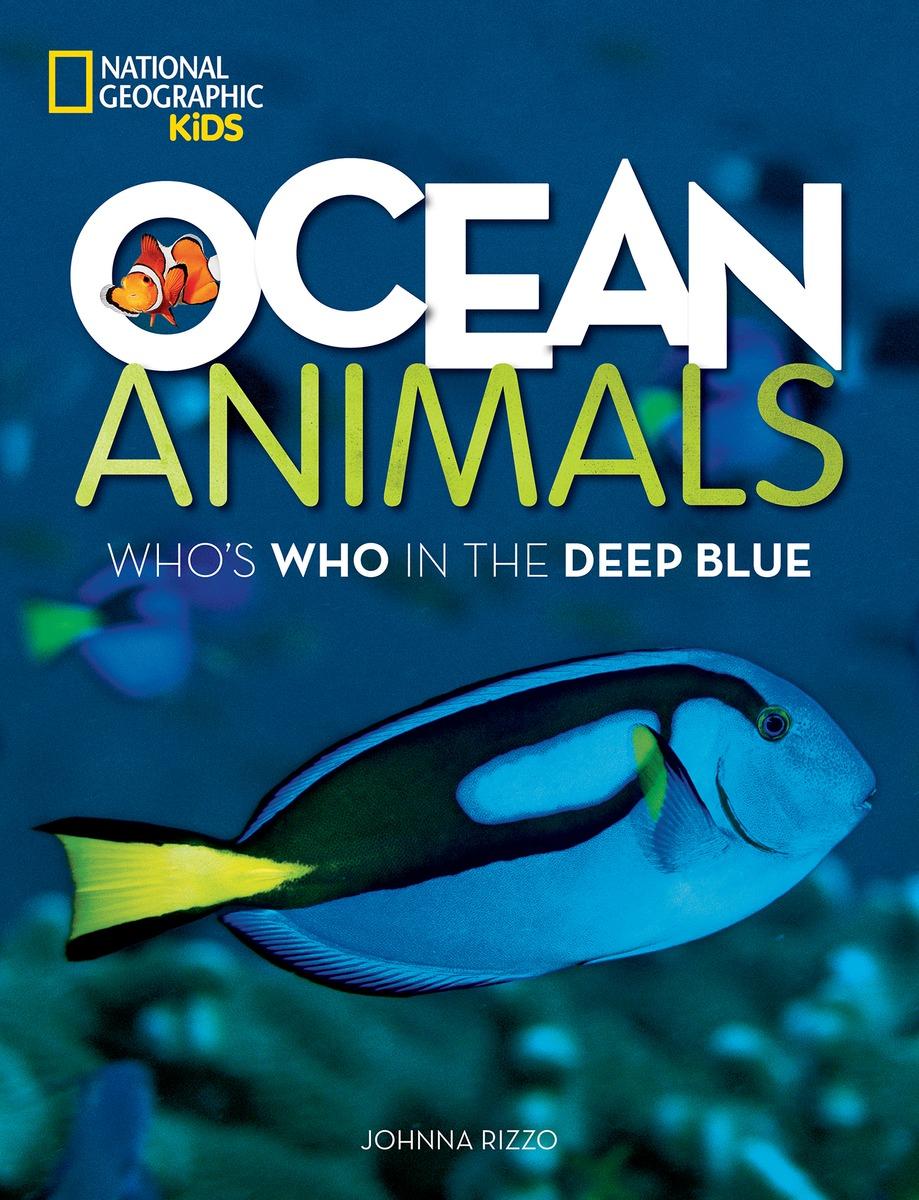 Ocean Animals Children S Book Council
