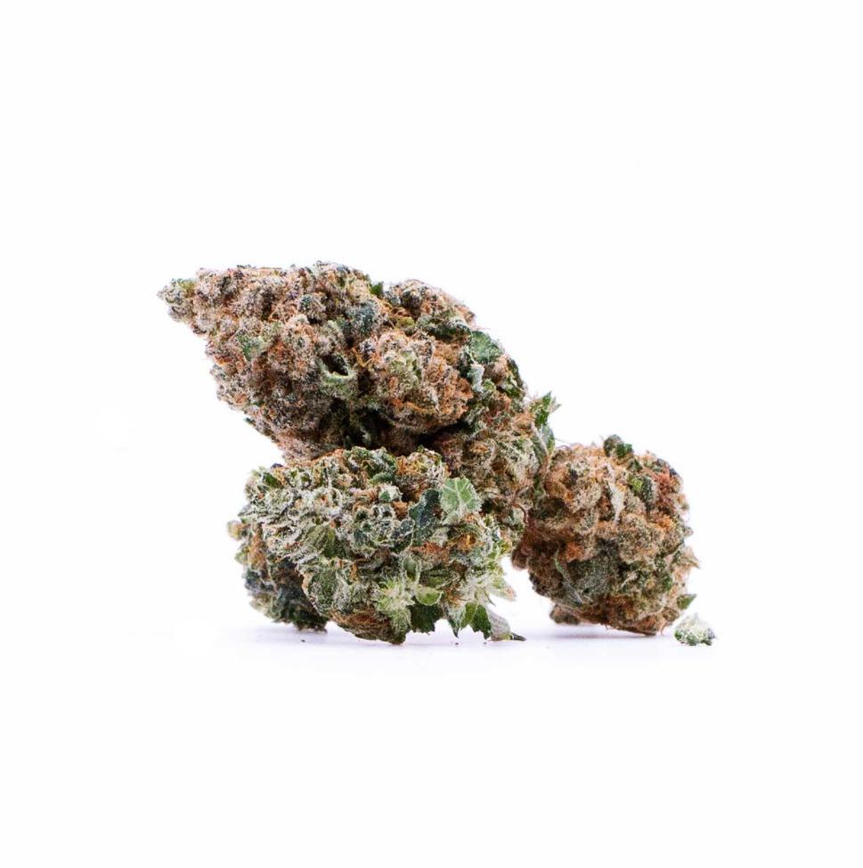 CBG kvety Orange Bud Sixty8