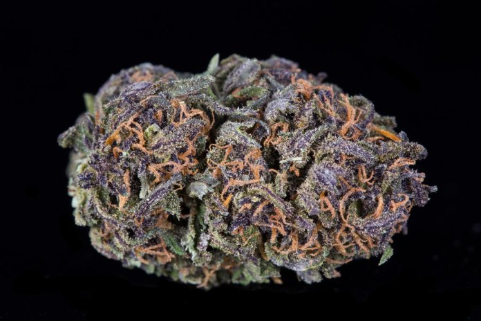 Empire wellness Otto - from the 'Best CBD Flowers US'