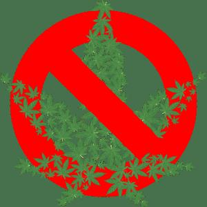 Will Trump end federal cannabis prohibition?