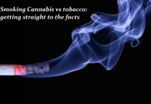 Smoking cannabis vs tobacco