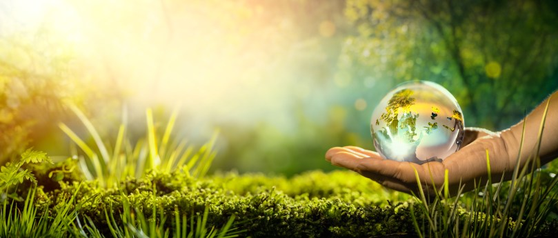 Cannabis eco-friendly industry, A dream or a reality?