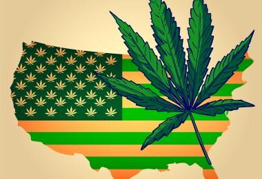 cannabis history