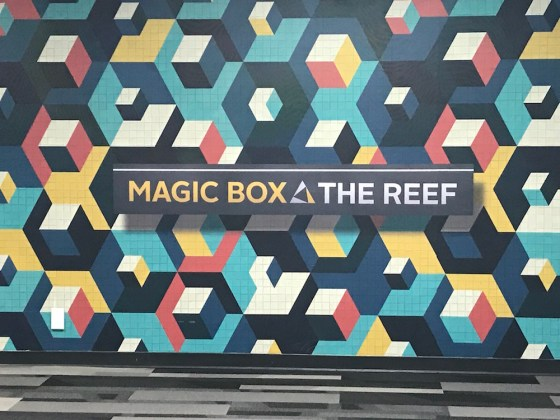 Magic Box at The Reef