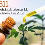 CBD Statistics-1-July 2019-CBDToday
