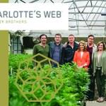 Charlotte's-Web-Krogers-CBDToday
